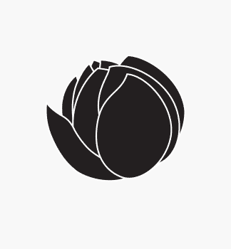 black lotus studios placeholder (1)